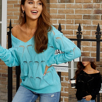 V-neck Floral Plain long sleeve Sexy Pullovers