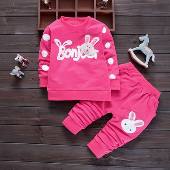 Toddler Snappy Rabbit Decor Sweatshirt and Pants Set