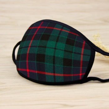 Plaid Pattern Printed Face Mask