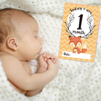 12 Pieces Newborn Baby Milestone Photography Set of 12 Baby Souvenir Monthly Card