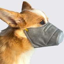 Pet Dog Respiratory PM2.5 Breathable Soft Face Cotton Mouth Mask(3 Pes)