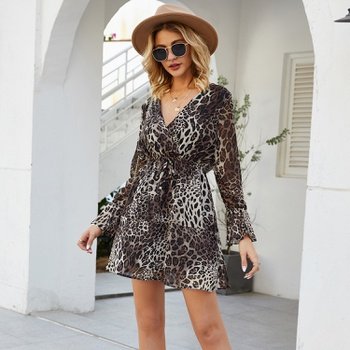 Pretty V-neck Leopard full print Dress