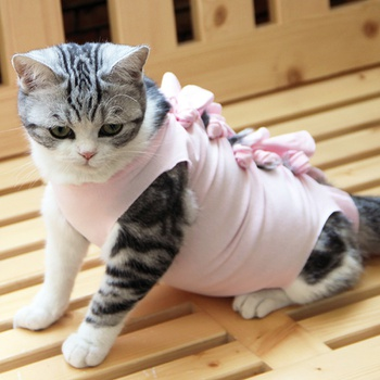 Anti-Lick Cat Recovery Suit, Cat Recovery Clothes After Surgical Sterilization, Cat Small Dog Neutering Clothes