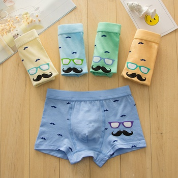 5-Pack Toddler Boy Print Knickers