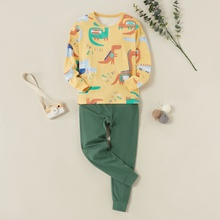 Kids Boy Cartoon Dinosaur Print Allover Long-sleeve Tee and Solid Pants Set