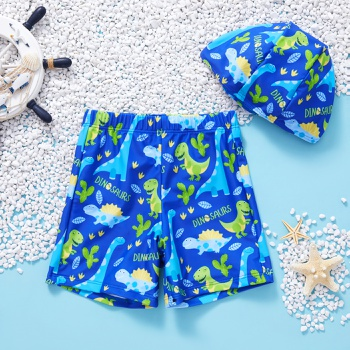 Baby / Toddler Boy Dinosaur Print Swimsuit With Hat