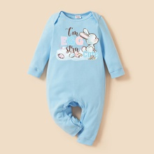 Care Bears Baby Boy/Girl 100% Cotton Easter Bunny Jumpsuits