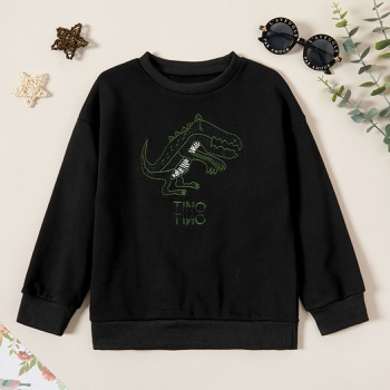 Kids Boy Dinosaur Sweatshirt