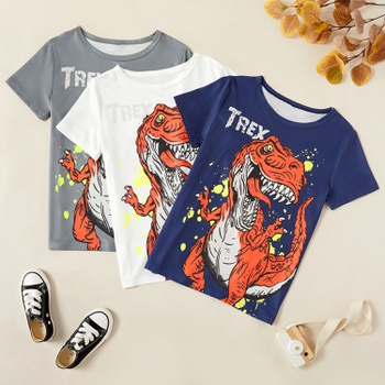 Kids Boy Dinosaur Tee