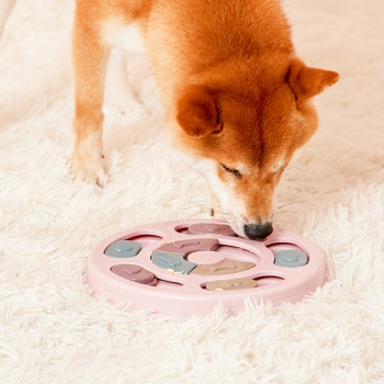 Pet Puzzle Toy Artifact-Relieving Artifact Interactive Puzzle Slow Food Bowl