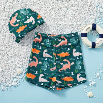Kids Boy Dinosaur Allover Shorts with Hat Swimsuit