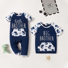 Mosaic Dinosaur Animal Print Pink Sibling Sets
